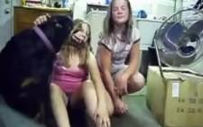 Köpek Sahibini Korumak İçin Bakın Neler Yaptı ?