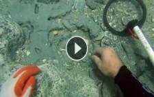 Okyanusun Dibinde Bulunan 300 Yıllık Hazine